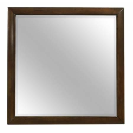 1535-6 Mirror