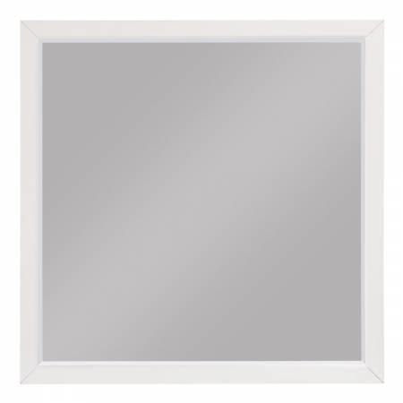 1803W-6 Mirror