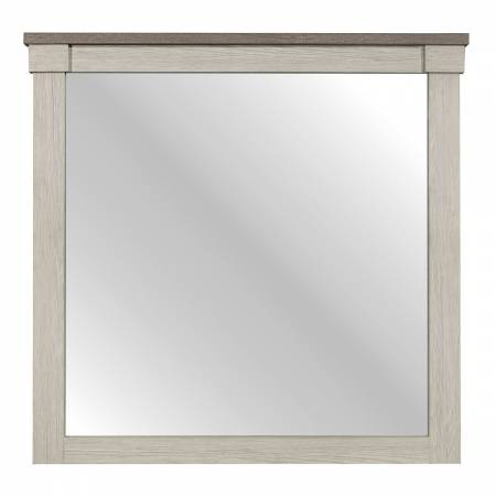 1677-6 Mirror