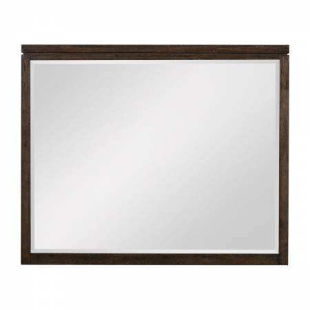 1669-6 Mirror