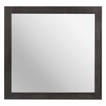 2059-6 Mirror