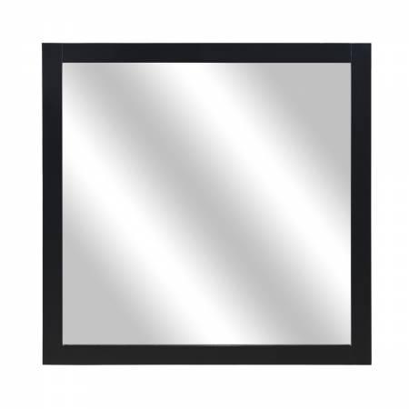 1519BK-6 Mirror Seabright