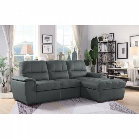 9858TP*SC 2-Piece Sectional with Pull-out Bed and Hidden Storage Andes