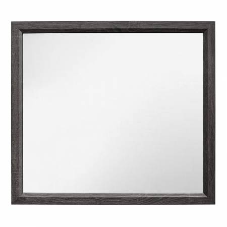1645-6 Davi Mirror - Gray